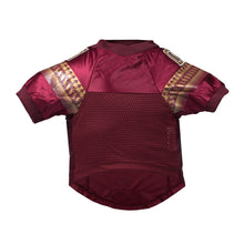 Load image into Gallery viewer, Florida State University Pet Premium Jersey