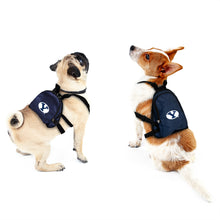 Load image into Gallery viewer, Brigham Young University Pet Mini Backpack