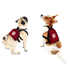 Load image into Gallery viewer, Indiana University Pet Mini Backpack
