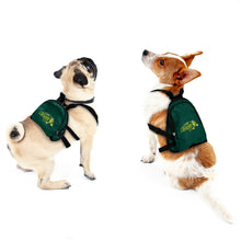 Load image into Gallery viewer, North Dakota State University Pet Mini Backpack