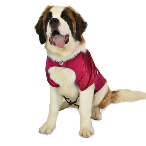 Tampa Bay Buccaneers Big Pet Stretch Jersey