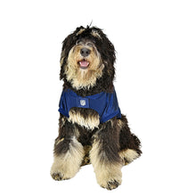 Load image into Gallery viewer, Houston Texans Big Pet Stretch Jersey