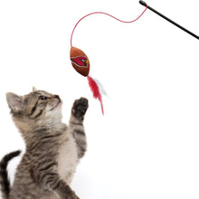 Load image into Gallery viewer, Arizona Cardinals Cat Wand