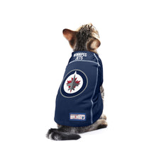 Load image into Gallery viewer, Winnipeg Jets Pet Jersey