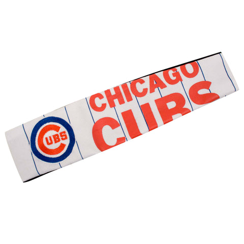 Chicago Cubs FanBand