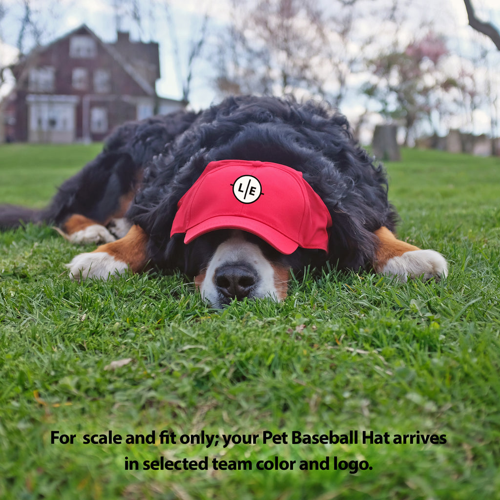 DC United Pet Baseball Hat