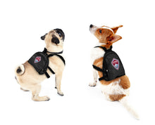 Load image into Gallery viewer, Colorado Rapids Pet Mini Backpack