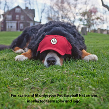 Load image into Gallery viewer, University of Arkansas Pet Baseball Hat