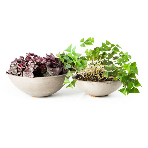 Meridian Bowl Planter