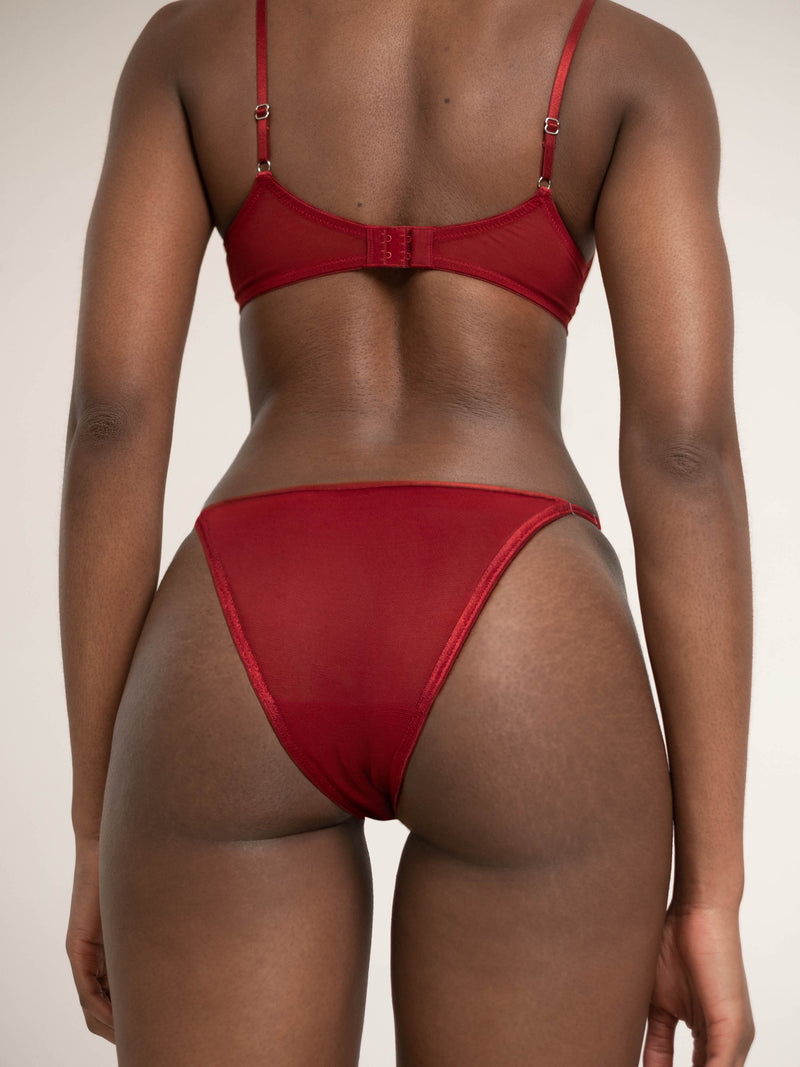 Rapture Red Brief | Blush Lingerie | Buy Underwear Online