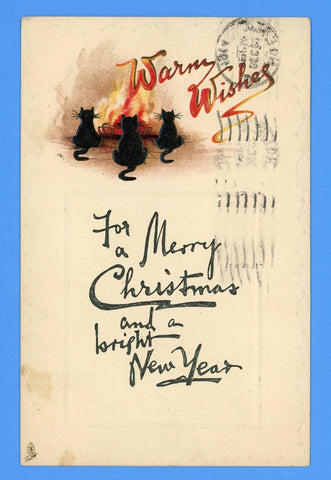 "Christmas & New Year's - ""Warm Wishes"" Embossed Postcard - Tuck & Sons"