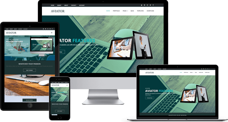 Aviator Responsive View