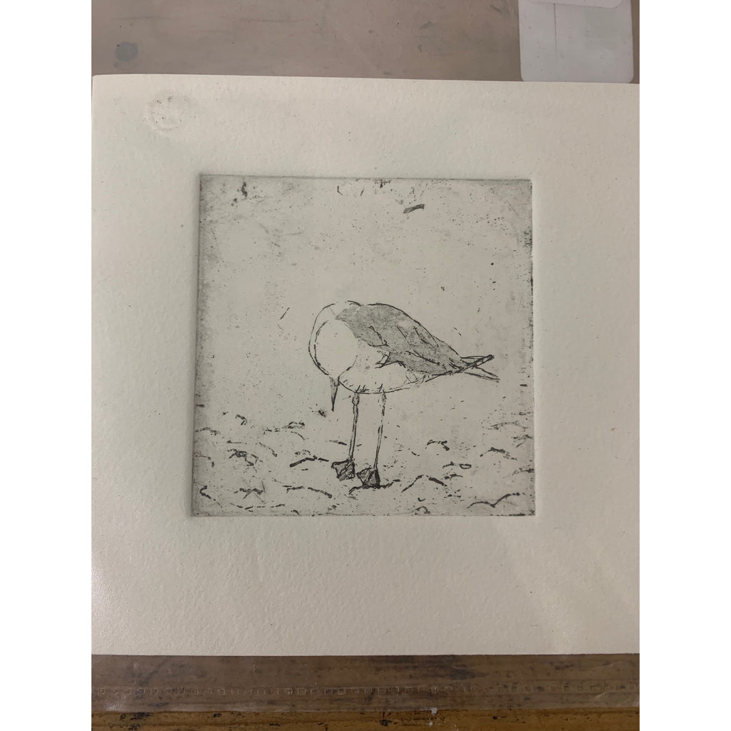 Seagull Lithograph