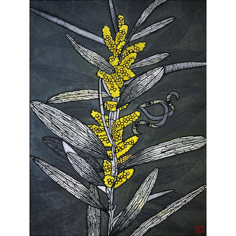 Coastal Wattle Large Print
