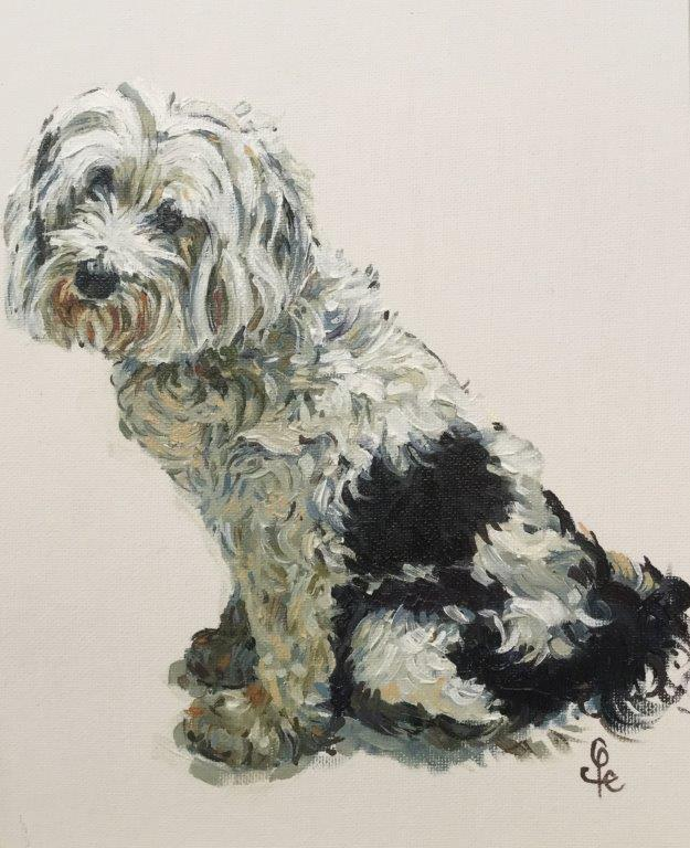 Dog Portrait Commissions