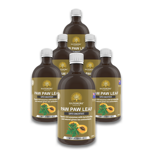 Paw Paw Leaf Super Concentrate 6 Bottle Pack