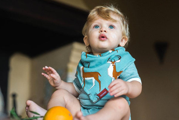 Organic Cotton Kerchief Bib in Hummingbird