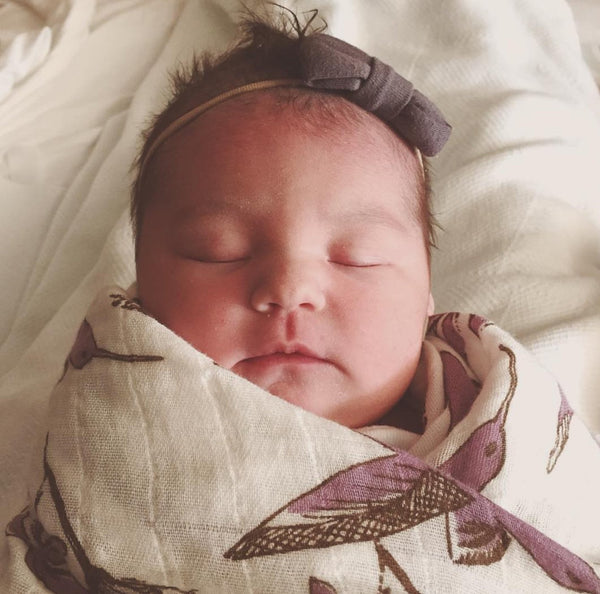 Organic Cotton Muslin Swaddle in Hummingbird