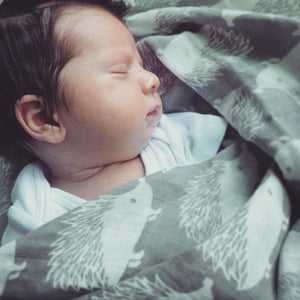 Organic Cotton Muslin Swaddle in Grey Hedgehog