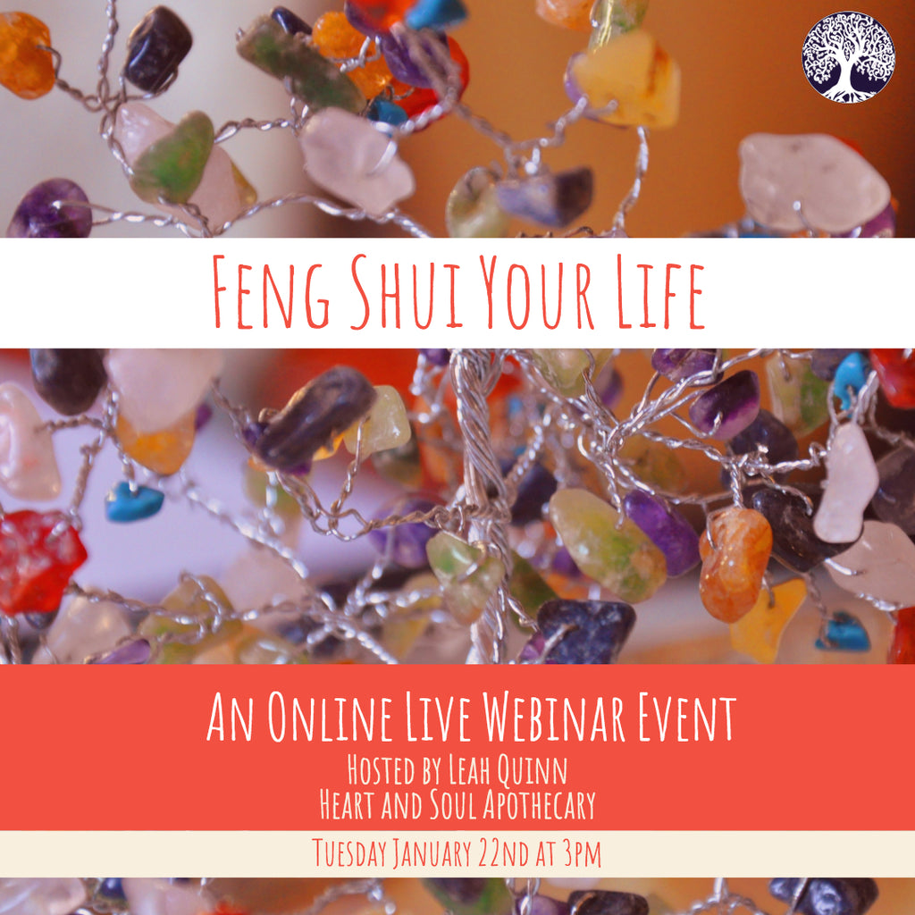 Feng Shui Your Life - A Live Webinar for The New Year - The Earth Boar