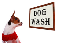 Ultrasonic-cleaning-for-pet-lovers---Clean-clippers,-perches,-filters-and-more!
