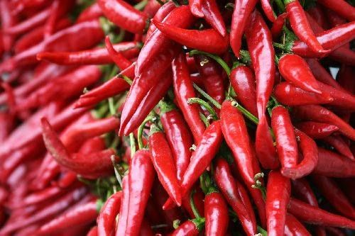 Chilli Cayenne Pepper