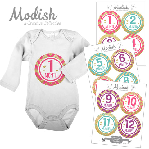 gold pink purple teal baby month stickers glamour baby girl