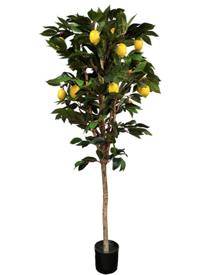 Artificial Lemon Tree (Height: 180cm) - 25040-180