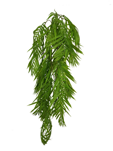 Artificial hanging amentotaxus formosana (Length: 80cm) - With UV protection | BG061