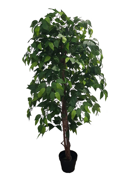 Artificial Ficus Tree with Silk Leaves (Height: 150cm/160cm/180cm) - 25000-150/AL15088/25001-180