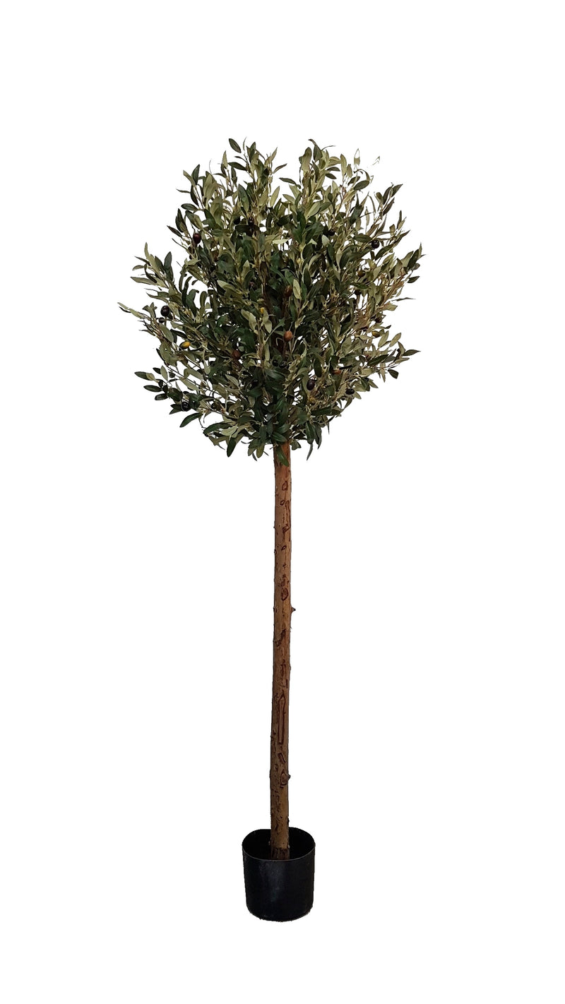 Artificial Olive Tree (150cm) - 25010-150