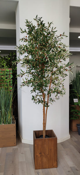 Artificial Olive Tree (Height: 180cm) - 25013-180