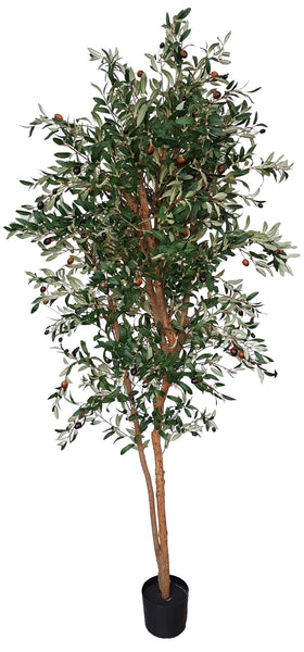 Artificial Olive Tree (180cm) - 25013-180
