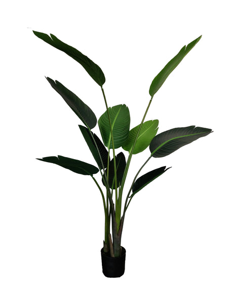 Artificial Strelitzia - Bird of Paradise (Height: 150cm) - 37001