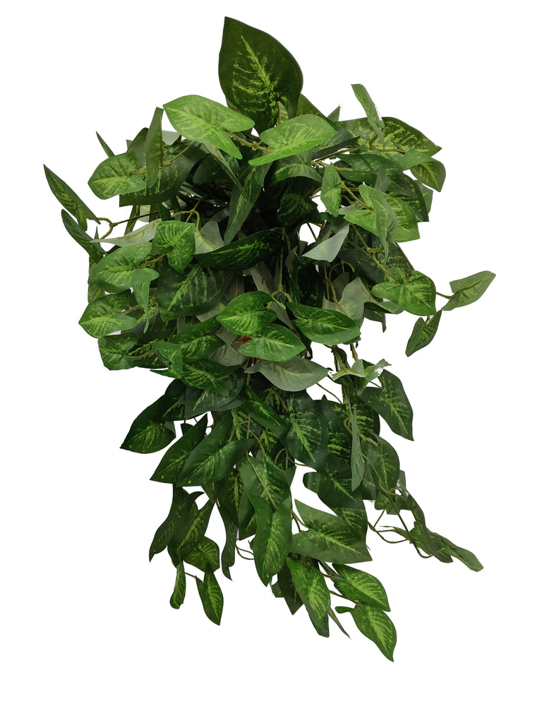 Artificial Syngonium (Length: 70cm)
