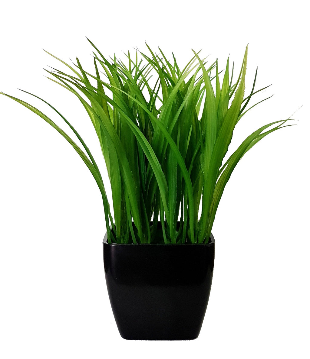 Potted Grass (Height: 25cm) - AL14G013