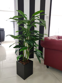 Artificial Dracaena Plant (Height: 120cm) - A057