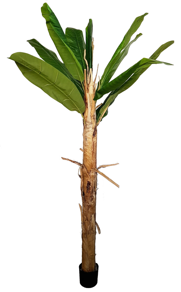 Artificial Banana Tree (Height: 220cm) - 25012-220