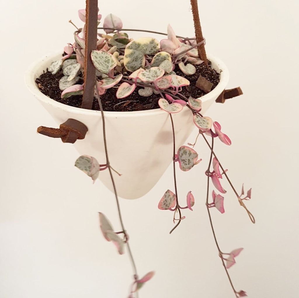 Ceramic Cone Handmade Leather Hanging Pot Variegated Chain of Hearts