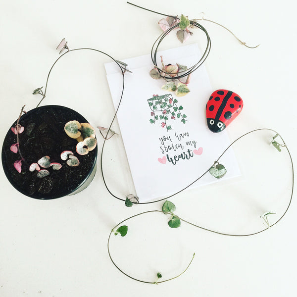 Card & Cutting Pack - You Have Stolen My Heart - Soul Made Boutique