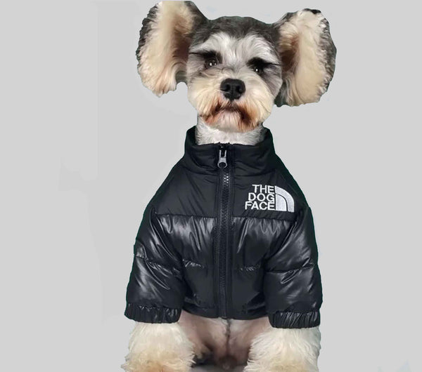 The Dog Face Dog Down Coat-Havetolove.com