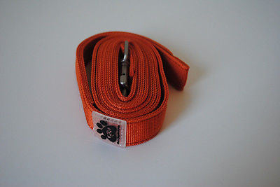 Premium Dog Leashes