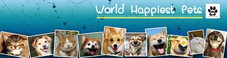 World Happiests Pets
