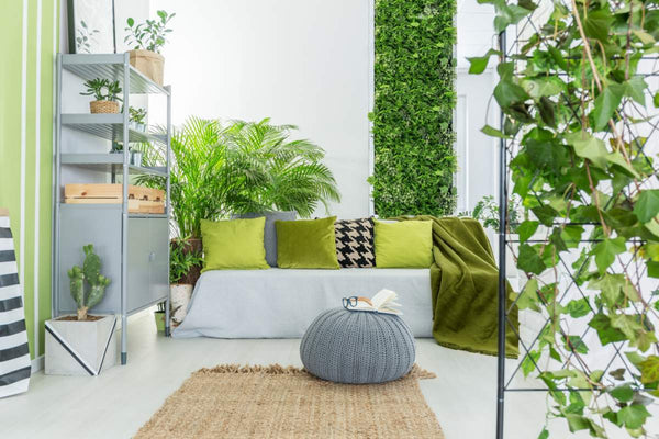 How and Why to Create a DIY Indoor Living Plant Wall