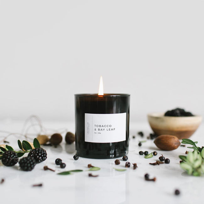 Lightwell Co. Candle Tobacco & Bay Leaf Black Tumbler Candle