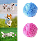 Funky Pet Toy Ball