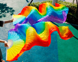 Rainbow Fan Dance 1 Pair (2pcs)