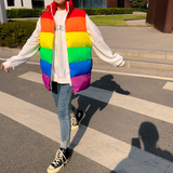 Winter Rainbow Vest