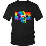 LGBT Skull Rainbow Flag Shirt