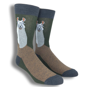 Llama Llama Socks by Foot Traffic - The Sock Spot